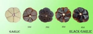 difference between raw garlic and black garlic