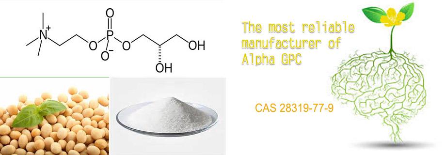 Alpha GPC manufacturer