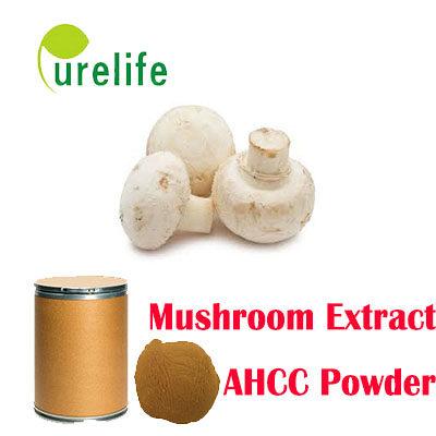 AHCC Mushroom