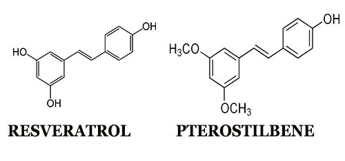 Pterostilbene and Resveratrol