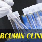 curcumin clinical research