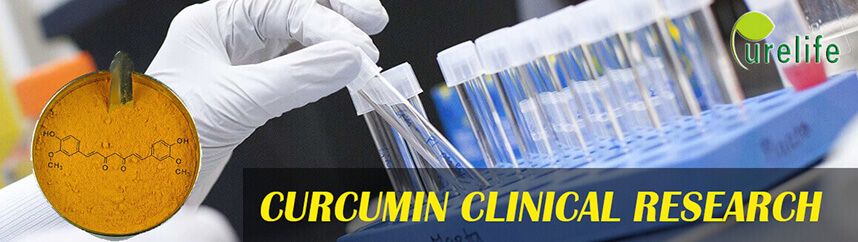curcumin clinical research