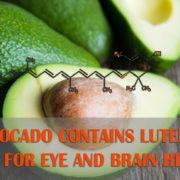 Avocado is good for eye and brain health