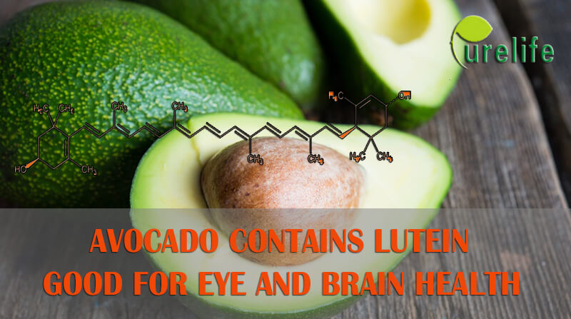 Avocado is good for eye and brain health