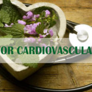 the active ingredients in herbs for cardiovascular health
