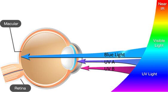 lutein the best blue light filter