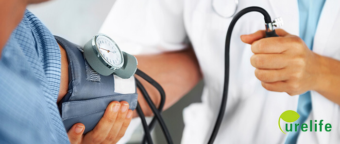 chitosan for blood pressure