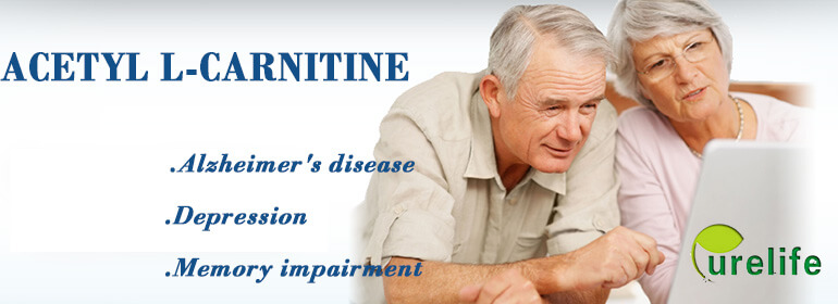 Acetyl L-Carnitine benefits for brain health